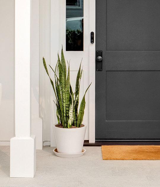 Arlo Wired Video Doorbell
